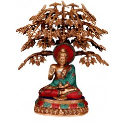 Coral Buddha Under Tree Brass