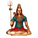 Coral Shiva Blessing