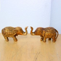 Pleasing Elephants