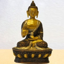Buddha Ashirvadh in Double Colour