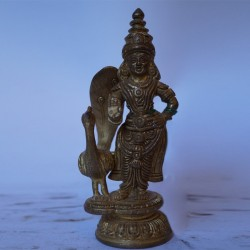Lord Subramanya with peacock brass idol